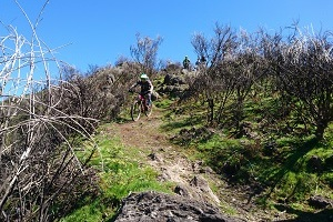 Freeride Camp Madeira