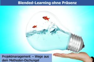 Projektmanagement - Wege aus dem Methodendschungel (Online-Learning)